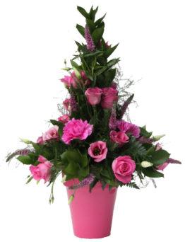 mille-fleurs-in-oasis-2